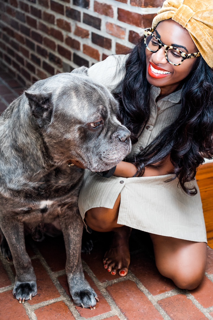 A Woman's Best Friend and Protector-My Dog and his Diet Journey